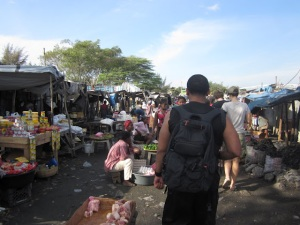 Adimu making his way through the market
